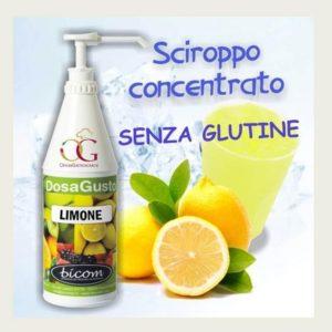 Insaporitore Limone kg. 1