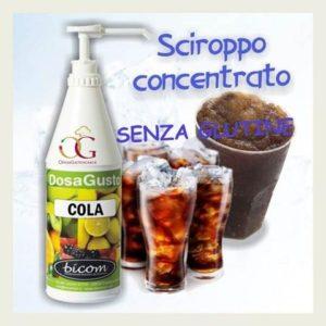 Insaporitore Cola kg. 1